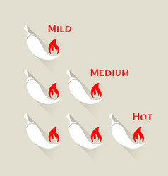 chilli peppers scale vector image