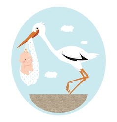 Stork and newborn baby in nest vector