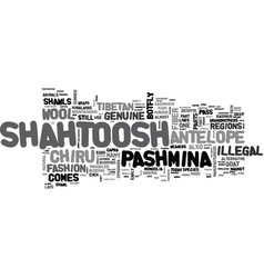 what is shahtoosh text word cloud concept vector image vector image