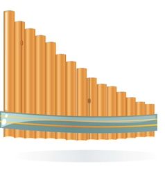 Wood pipes vector
