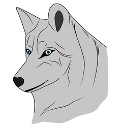 Grey wolf the Wolf good wolf vector image