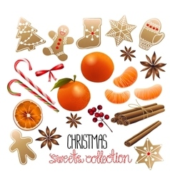 Huge collection of christmas sweets vector