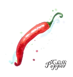 Burning chili pepper on a white background vector