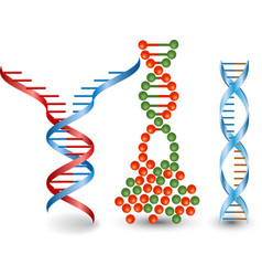 Abstract images of broken dna chains vector