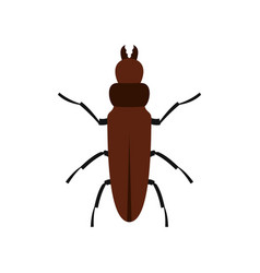Cockroach icon flat style vector