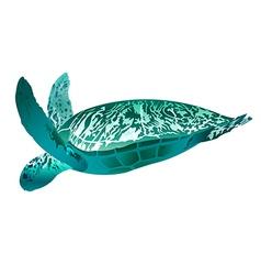 sea creature vector image