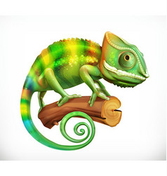 Chameleon 3d icon vector