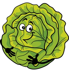 cute cabbage vegetable cartoon vector image vector image