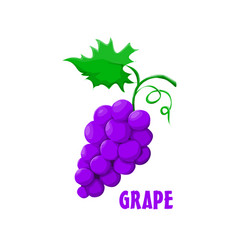 Logo grape farm design vector