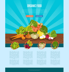 organic farm food banner with vegetable vector image vector image