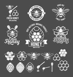 vintage frame with honey label set vector image