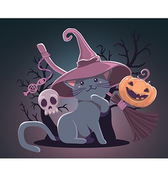 Halloween with orange pumpkin cat in witch vector