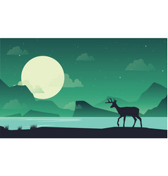 silhouette of deer on lake at night scenery vector image