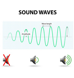 Amplitude of a sound wave vector