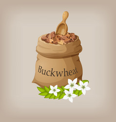 buckwheat in the bag vector image