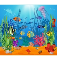 Sea Life Animals Plants Composition vector image