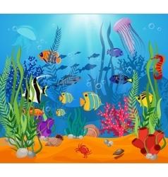 Sea Life Animals Plants Composition vector image vector image