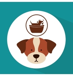 Veterinary dog care gromming icon vector