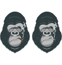 Monkey with a cigarette vector image vector image