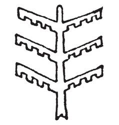 Tree design stem serves as a pillar or beam vector