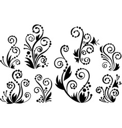 Floral flourishes vector