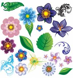 flower elements vector image vector image