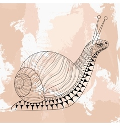 Hand drawn zentangle Snail for adult anti stress vector image vector image