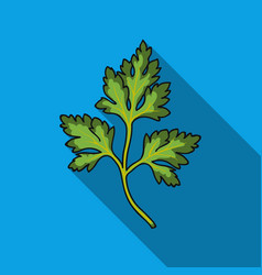 parsley icon in flat style isolated on white vector image