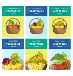farm fresh vegetable label set vector image vector image