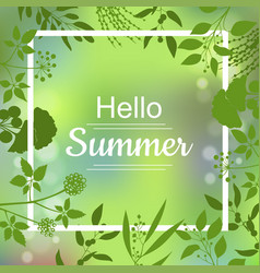 hello summer green card vector image vector image