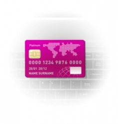 notebook and a credit card vector image vector image