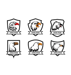 eagle or american falcon heads with shields logo vector image vector image