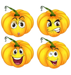 Four pumpkins vector image vector image