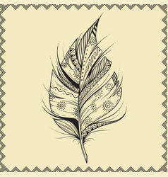 hand drawn feather on beige background with vector image vector image