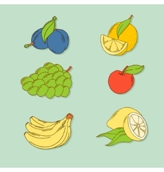 Set of hand-drawn tropic fruits vector image