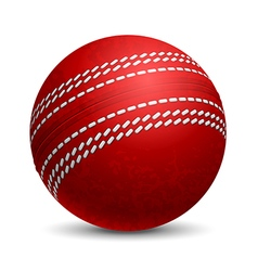 Cricket ball vector