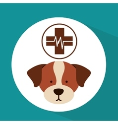 Veterinary dog care clinic icon vector