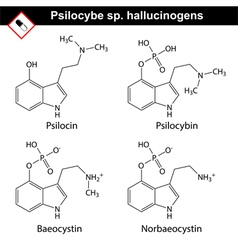 Natural tryptamine psilocybe sp alkaloids vector