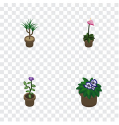 isometric flower set of flowerpot grower flower vector image vector image