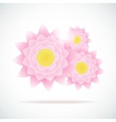 Pink lotus Eps-10 vector image