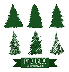 pine tree design vector image