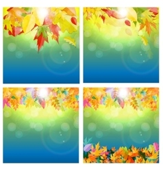 Shiny Autumn Natural Leaves Background Set vector image