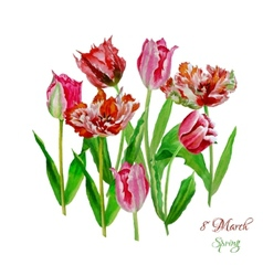 Background with tulips4-03 vector image