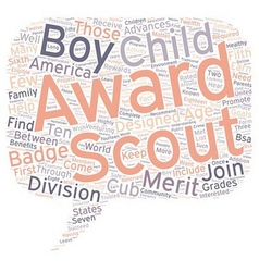 Common boy scout awards text background wordcloud vector