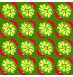 kiwi slices pattern vector image