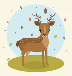 Cartoon deer wild animal with falling leaves vector