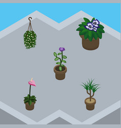 isometric plant set of flowerpot flower blossom vector image