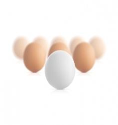 egg concept vector illustration vector image