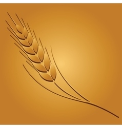 Wheat image vector image