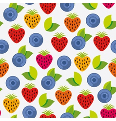 Berry background vector